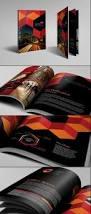 41 best brochure design images on pinterest brochure design