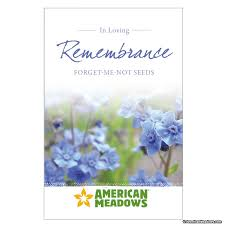forget me not seed packets in loving remembrance seed packet american