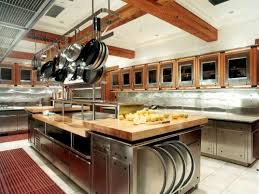 Kitchen Cabinet Features Stainless Steel Kitchen Cabinets With Wooden Features Designs