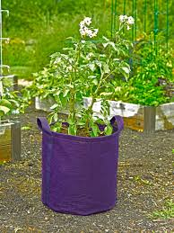 Patio Potato Planters Using The Potato Grow Bag Gardener U0027s Supply
