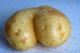 Potatoe Meme - 22 meme internet here is a potato that looks like kim kardashian