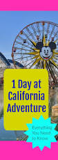 Disney California Adventure Map Best 25 Disney Park Secrets Ideas On Pinterest Disney Facts