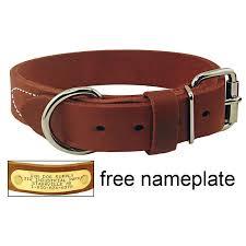 1 1 4 in gun deluxe leather standard collar rten114