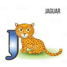 jaguar clipart jaguar clipart animal zoo pencil and in color jaguar clipart