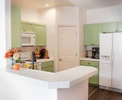 how to choose kitchen cabinets color interior paint color ideas painting inside kitchen