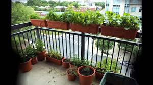 unthinkable apartment garden ideas balcony vegetable herb