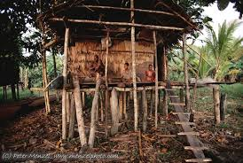 Tree Houses Around The World 12 Different Types Of Shelters Found In Countries Around The World