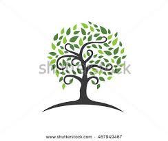 tree logo stock vector 506246743