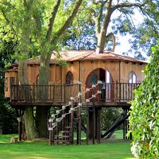 106 best tree abodes images on the tree treehouses
