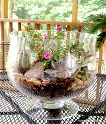 Home Depot Flower Projects - how to make a succulent garden diy projects home depot