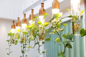 indoor gardening lights orchids garden society u2013 grow tents for