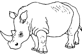 coloring pages rhino coloring