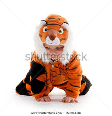 Baby Tiger Costumes Halloween Tiger Costume Stock Images Royalty Free Images U0026 Vectors