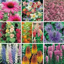 100 best garden ideas images on pinterest garden ideas garden