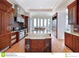 3d kitchen download impressive home design