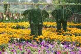 Beauty Garde World Beautiful Flower Gardens Beautiful Flower Gardens