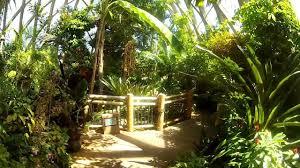 Denver Botanic Gardens Free Days Denver Botanic Gardens Tropical Greenhouse