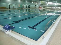 olympic size swimming pool ultimate cost builders u2014 home landscapings
