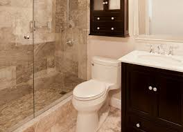 Bathroom Remodeling Tampa Fl Bathroom The Most Elegant Mobile Home Renovation For House Plan