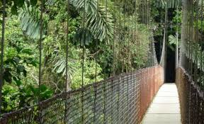 Backyard Zip Line Without Trees by 9 Best Costa Rica Zip Line U0026 Canopy Tours Costa Rica Experts