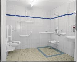 haltegriffe badezimmer das bad altersgerecht umbauen selbstständig bis ins hohe alter