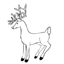 free printable reindeer coloring pages kids