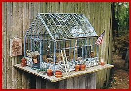 terrarium greenhouse terrific tabletop greenhouse or terrarium for