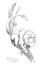 drawbridge monkey by reillybrown on deviantart