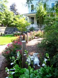 Backyard Landscaping Ideas For Dogs by How To Choose The Right Fence