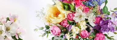 flowers belfast florists belfast send flowers florist