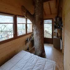chambre dans les arbres une cabane dans un arbre au milieu d un ch de lavande chs de