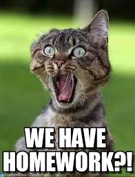 Homework Meme - we have homework screaming cat meme on memegen quotes memes
