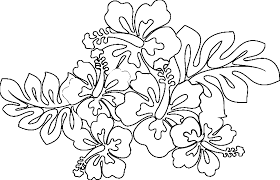 hawaii coloring pages best coloring pages adresebitkisel com