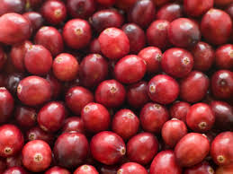 Questions About Thanksgiving Yard And Garden All About Thanksgiving Foods Iowa State