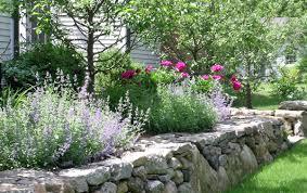 plan a colorful perennial garden traditional home