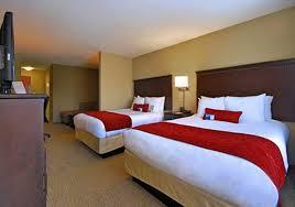 Comfort Suites Sarasota Comfort Suites Sarasota Fl Innovative Design U0026 Procurement