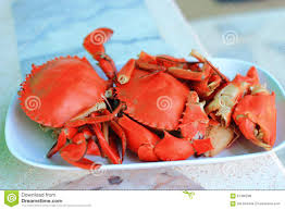 crab back images reverse search