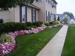 Evergreen Landscaping Ideas Front Garden Design Evergreen Plants And Borders From On A Roll