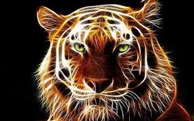 imagenes abstractas hd de animales tigre del fondo de pantalla abstracto fondos de pantalla gratis