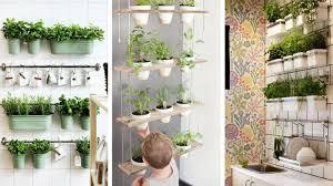 plantes cuisine 9 façons de cultiver des plantes d intérieur pour la deco de la