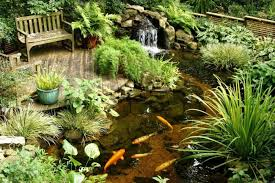 pond waterfall design ideas vdomisad info vdomisad info