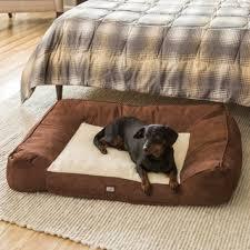Memory Foam Dog Bed Animal Planet Large Memory Foam Pet Bed Lounger Free Shipping