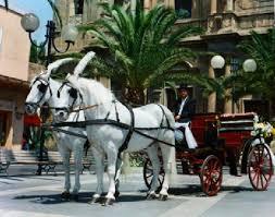 carrozze antiche carrozze con cavalli a modica