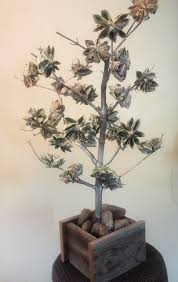wedding gift of money money tree wedding gift gallery wedding decoration ideas