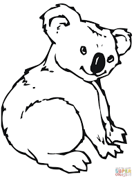 koala coloring page amazing koala bear coloring pages top