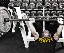 Weight Bench Workout Plan Bench Press Workout Plan Exercise Com
