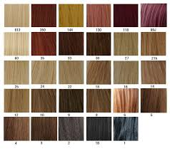 hair color chart hair color chart aprillacewigs com