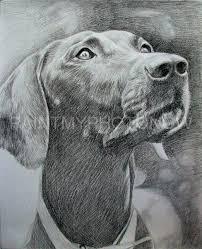 pencil drawings images pencil drawing image pencil drawings