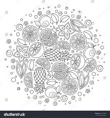 round pattern exotic fruits leaves hand stock vector 581004865