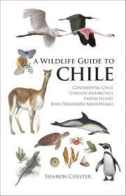 a wildlife guide to chile ebook sharon chester descargar libro